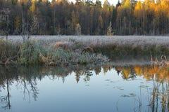 L'inverno sta venendo presto Fotografia Stock