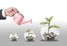 L'investimento di vista superiore è come la piantatura degli alberi Ciao che PR Immagine Stock Libera da Diritti