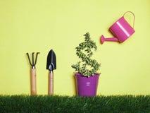 L'investissement de vue supérieure est comme planter des arbres Faites attention qu'elle des RP photo libre de droits