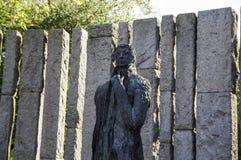 l'irlanda dublino Wolfe Tone Fotografie Stock Libere da Diritti