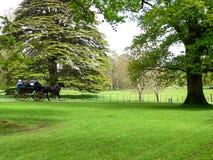 l'irlanda Parco nazionale di Killarney fotografia stock libera da diritti