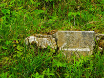 l'irlanda Parco nazionale di Killarney Immagini Stock Libere da Diritti