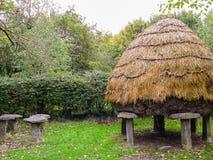 l'irlanda Vecchio granaio irlandese Immagini Stock