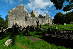 L'Irlande, Co Kerry, abbaye de Muckross, Killarney Photographie stock libre de droits