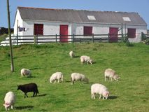 l'irlande Dans le comté du Donegal Photographie stock