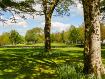 l'irlande Parc national de Killarney Images stock
