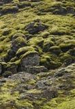 L'Islanda. Area del sud. Lakagigar. Paesaggio vulcanico. Immagini Stock