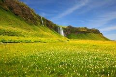 L'Islanda nel giorno di estate Fotografie Stock