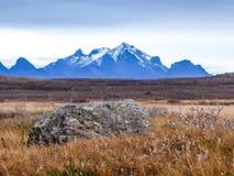 L'Islanda - pascolo dorato con una catena di montagna alta nella parte posteriore fotografia stock