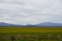 L'Islande - le Skagafjördur - l'Islande du nord Image libre de droits