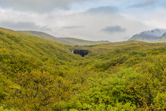 l'Islande - le stationnement national de Skaftafell Images libres de droits