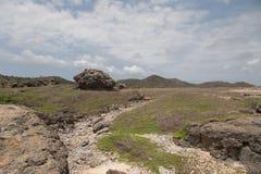 L'isola dei Caraibi del Bonaire Immagine Stock Libera da Diritti
