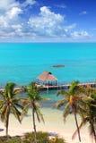 L'isola dei Caraibi tropicale di Contoy di vista aerea Immagini Stock