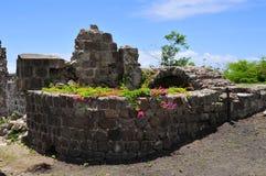 L'isola del Nevis, i Caraibi Immagini Stock