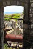 L'isola del Nevis, i Caraibi Immagini Stock Libere da Diritti