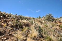 L'isola della luna è situata sul Titicaca Fotografie Stock