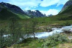 L'isola di Runde è situata nel Nord della Norvegia Immagine Stock Libera da Diritti