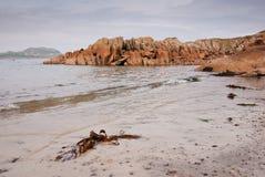 L'isola di sciupa la spiaggia Immagini Stock Libere da Diritti
