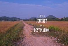 L'ispirazione e la motivazione citano sul backgroun vago del giacimento del riso fotografia stock