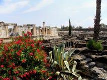 L'Israël, Capernaum, Tabgha, situé sur le rivage du nord du image stock