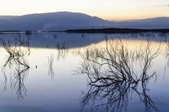 l'israele Mare guasto alba ALBA Fotografia Stock