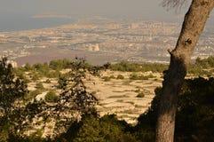 l'israele Volo dell'uccello - 1 Fotografie Stock Libere da Diritti