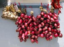 L'Italia, area Calabria, cipolla rossa di Tropea (rossa di Cipolla) Immagine Stock Libera da Diritti