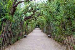 L'Italia, Firenze, giardino di Boboli Immagini Stock Libere da Diritti