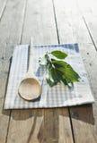 L'Italia, la Toscana, Magliano, cucchiaio di legno, foglie della baia e tovagliolo sulla tavola di legno Fotografie Stock