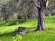 L'Italia - pace in Toscana Fotografia Stock Libera da Diritti