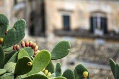 L'Italia - Sicely - briciole fotografie stock