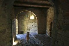 L'Italia, Toscana, zona di Chianti, villaggio di Montefioralle immagini stock libere da diritti