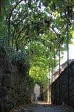L'Italia, Toscana, zona di Chianti, villaggio di Montefioralle fotografie stock libere da diritti