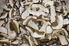 L'italiano elabora i formaggi Immagini Stock