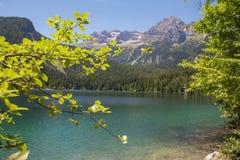 L'Italie, Alto Adige : Réflexion dans le lac Tovel Images stock