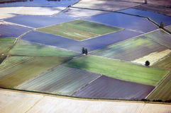 l'Italie, Lombardie, aménage le gisement en parc de riz de voient l'aer Image libre de droits