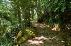 L'itinerario pedonale al palazzo di Pena Sintra portugal immagine stock