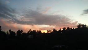 L A jasne futerkowy na czerwony słońca zachód słońca na zimę drzewa Obraz Stock