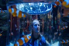 L'jeune homme regarde des poissons de clown dans un réservoir énorme Photos stock