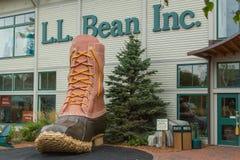 L.L. Bean Storefront Stock Photo
