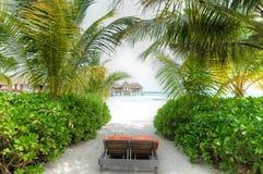 L'île de vacances chez les Maldives Image libre de droits