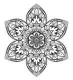 Lílium flower Stock Image