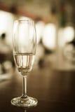 lśnienia szklany wino Obraz Royalty Free