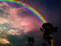 l'obscurité d'arbre de silhouette d'arc-en-ciel a répandu le nuage du coucher du soleil Photographie stock
