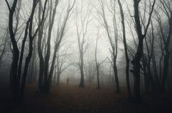 L'obscurité a hanté des bois avec la silhouette et le brouillard de l'homme Photos stock