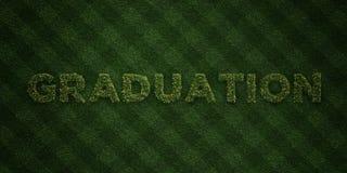 L'OBTENTION DU DIPLÔME - lettres fraîches d'herbe avec des fleurs et des pissenlits - redevance rendue par 3D libèrent l'image co Photographie stock