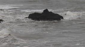L'océan pacifique clips vidéos