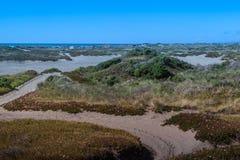 L'océan pacifique et les dunes du Samoa Image stock