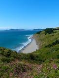 L'océan pacifique Shoreline, côte de l'Orégon Image libre de droits