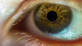 L'occhio (2) Fotografie Stock Libere da Diritti